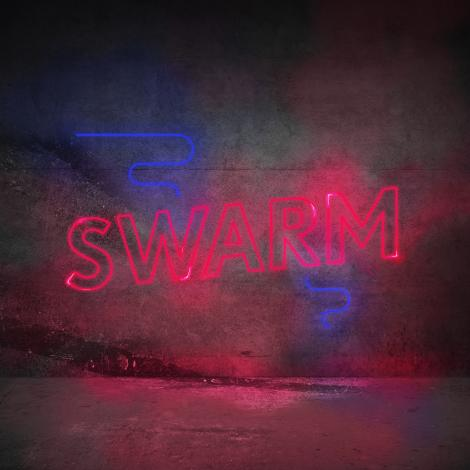 Image for SWARM: dance like everyone's watching