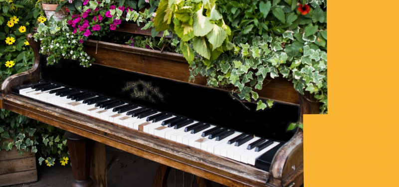 The Leeds Piano Trail | Come Along and Plant