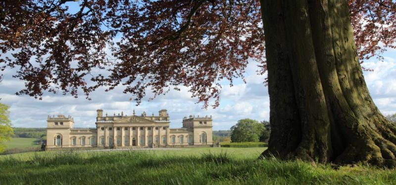 The Big Harewood Walk