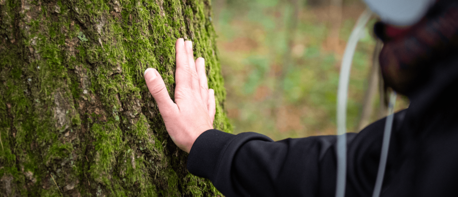 Woman's hand touches the bark of a tree. She is wearing headphones.