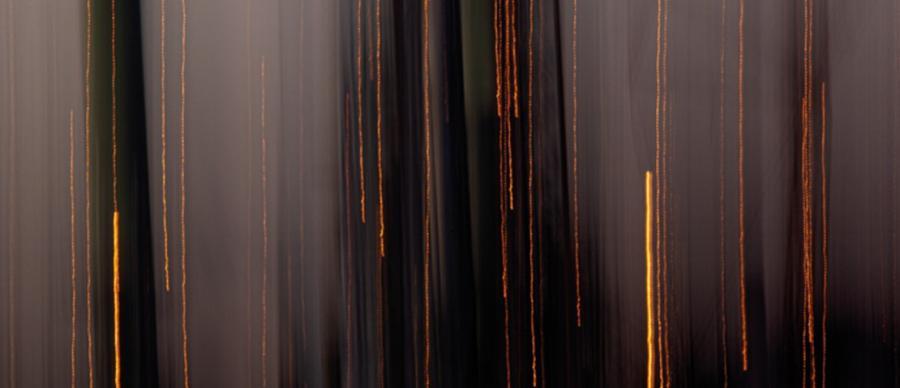 Image: Arnold Lewis, MA Creative Practice. Photograph.