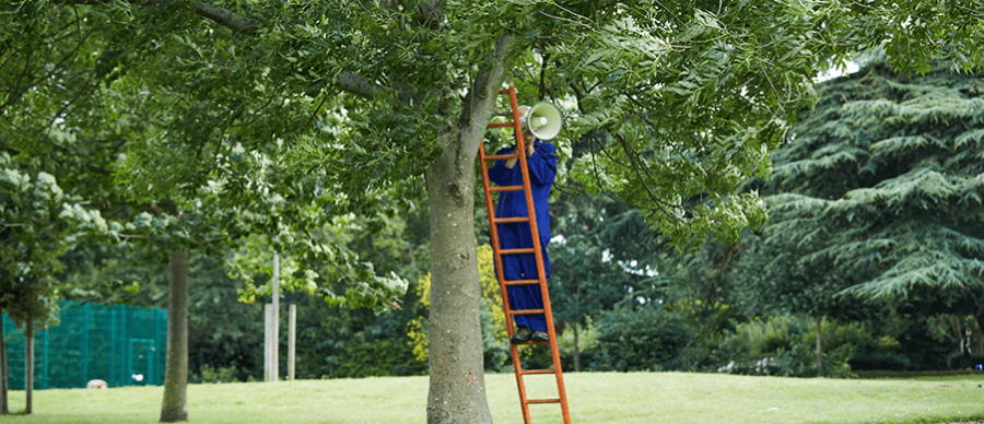 Man in blue boiler suit using a mega phone stood on a ladder half way up a tree