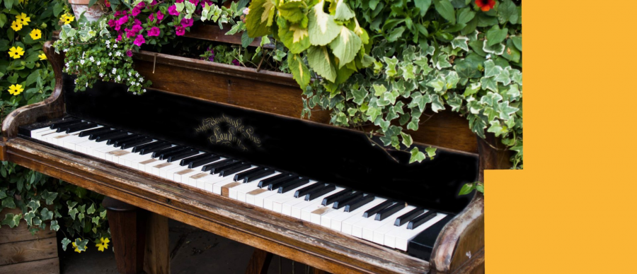 a piano with flowers and plants on top