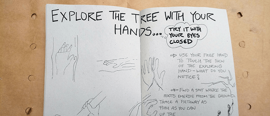 """a picture of the guidebook. It reads: """"explore the tree with your hands"""""""