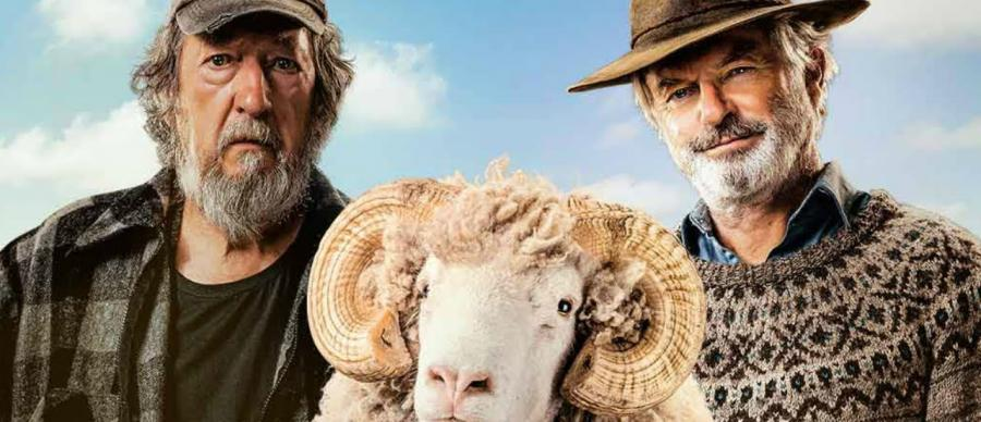 Poster Image of Rams. Two men and a sheep.