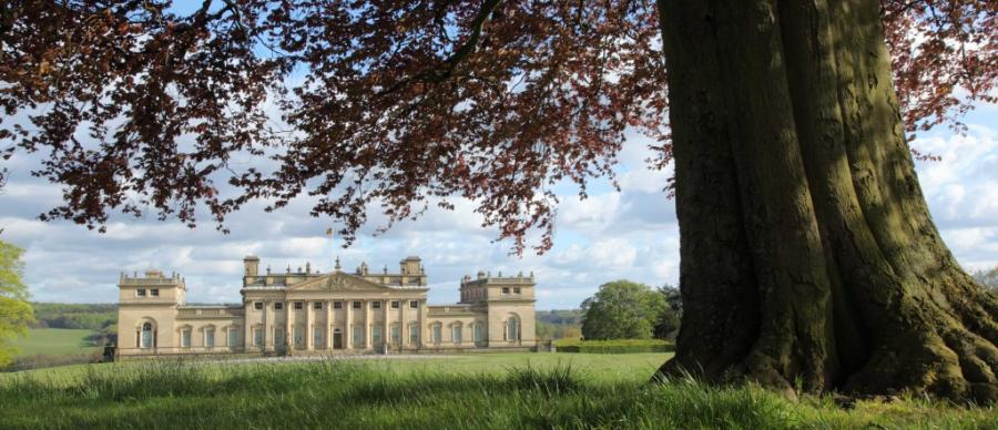 An iconic view of Harewood from the north