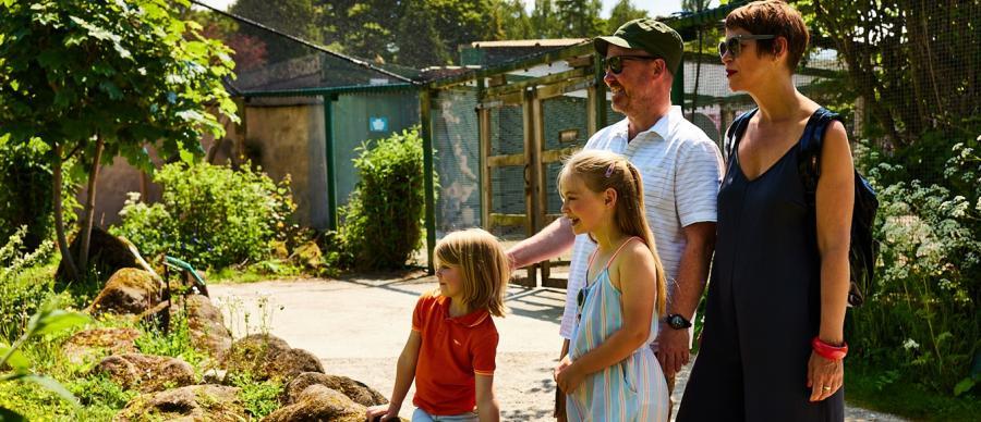 Family looking out for Wildlife World Zoo animals.