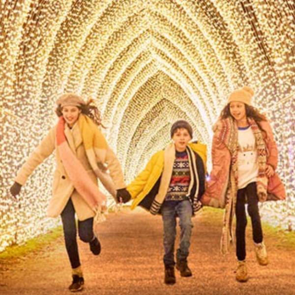 Christmas at Temple Newsam