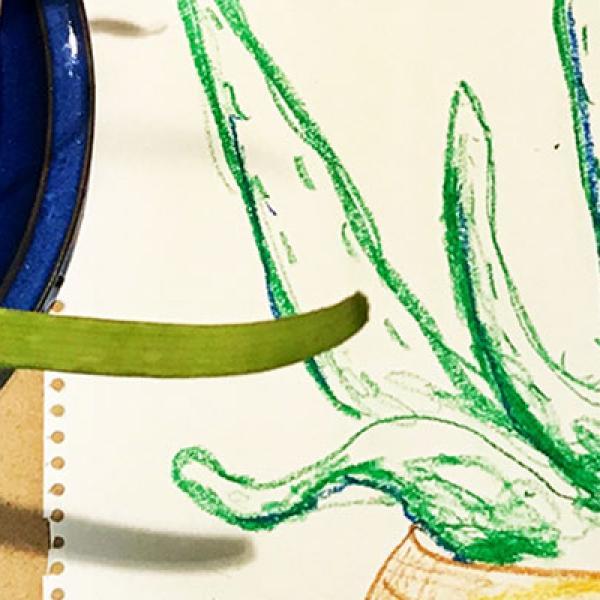 Workshop.: Botanical Drawing Workshop