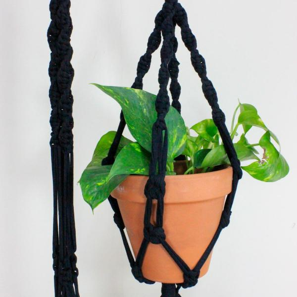 Macrame plant hanger cradling two plant pots and two house plants