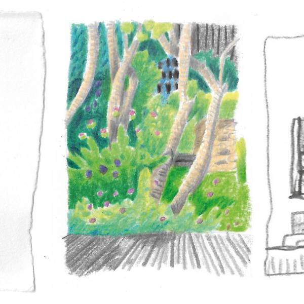 Drawing Workshop with Si Smith
