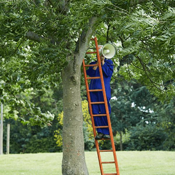 Calling Tree - Talk