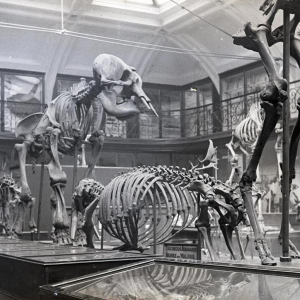 199 Years of Museums in Leeds