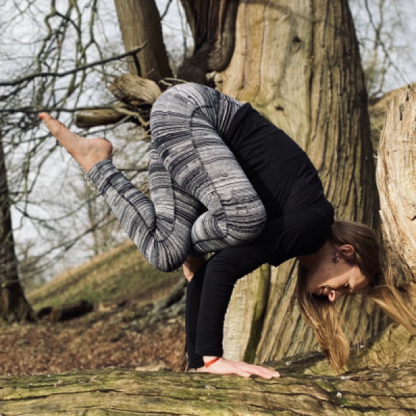 Woman in pigeon pose on a tree