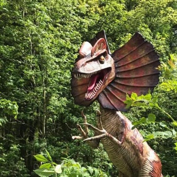 Jurassic Summer - The Summer Adventure