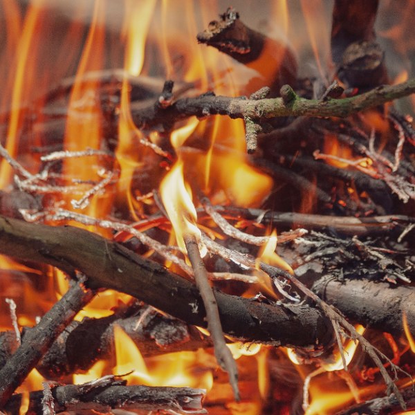 Open Source Arts Virtual Campfire: An Online Open Mic!